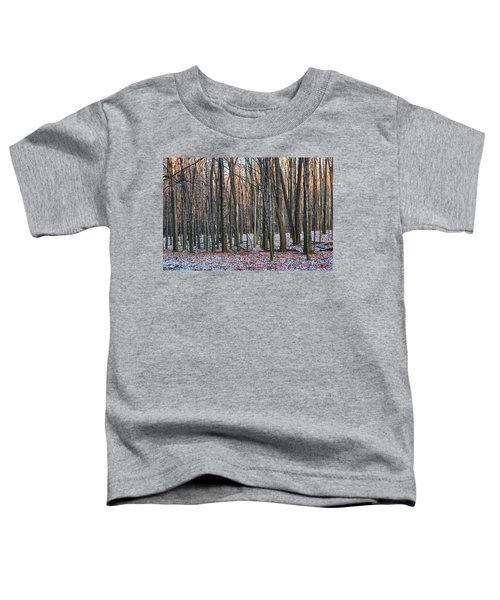 Winter - Uw Arboretum Madison Wisconsin Toddler T-Shirt