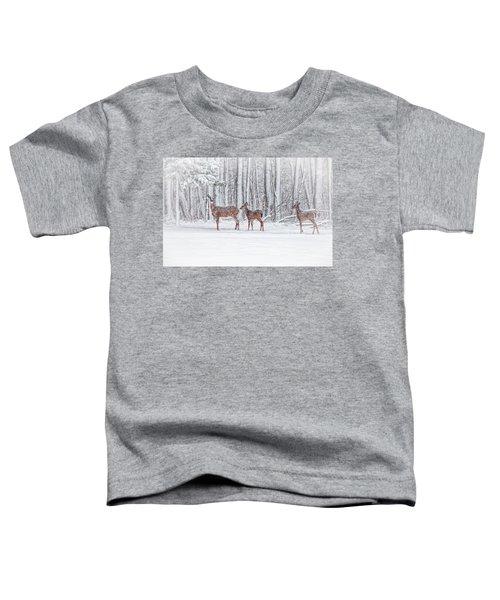 Winter Visits Toddler T-Shirt