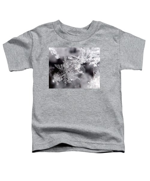 Winter's Beauty Toddler T-Shirt
