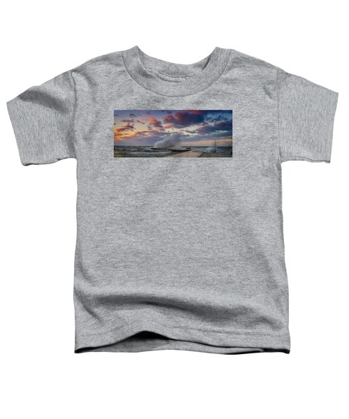 Winters Fury Toddler T-Shirt