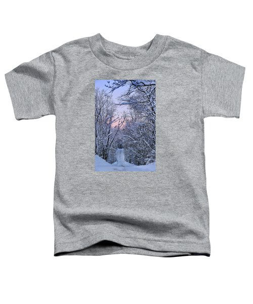 Wonderland Road Toddler T-Shirt