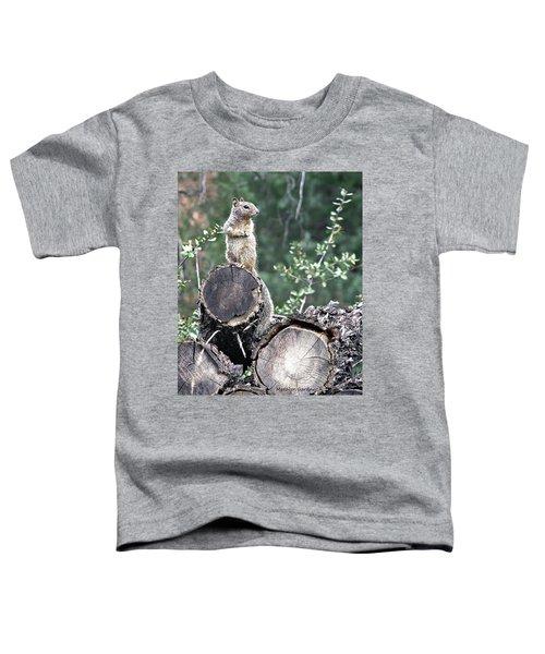 Woodpile Squirrel Toddler T-Shirt