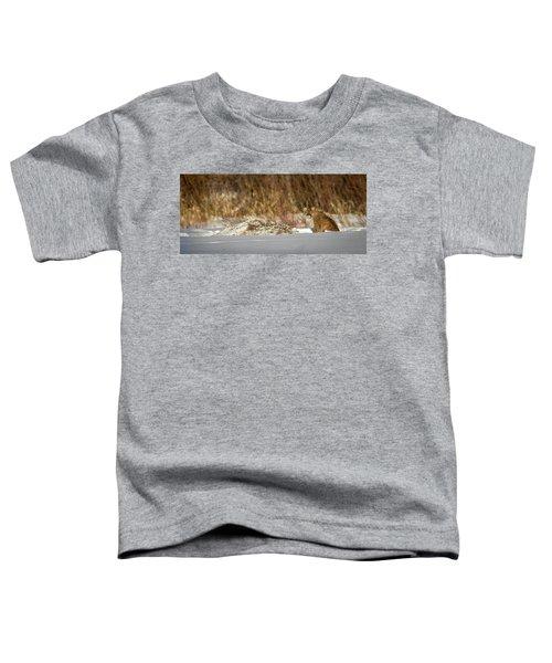 Yampa Glare  Toddler T-Shirt