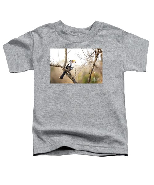 Yellow-billed Hornbill Sitting In A Tree.  Toddler T-Shirt by Jane Rix