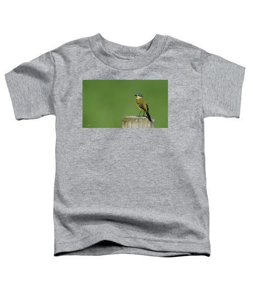Yellow Wagtail Perching On The Roundpole Toddler T-Shirt
