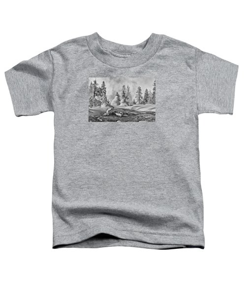 Yellowstone In Winter Toddler T-Shirt by Gary Lengyel