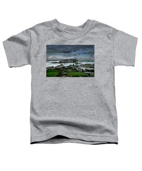 Zamas Beach #14 Toddler T-Shirt