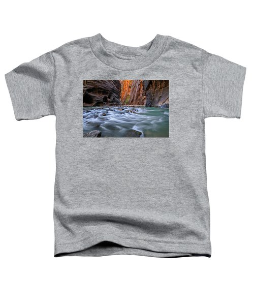 Zion Narrows Toddler T-Shirt
