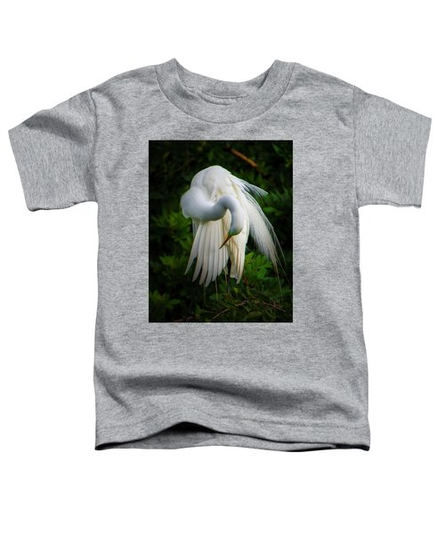 Breeding Plumage And Color Toddler T-Shirt