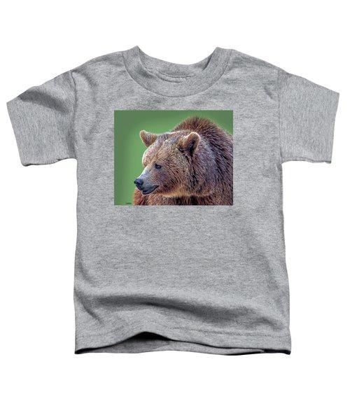 Brown Bear 5 Toddler T-Shirt