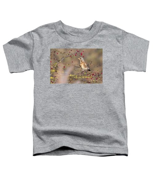 Fieldfare Toddler T-Shirt
