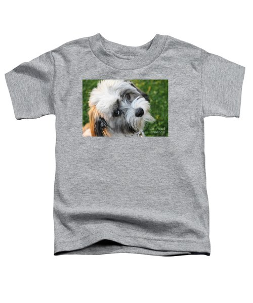 Havanese Toddler T-Shirt