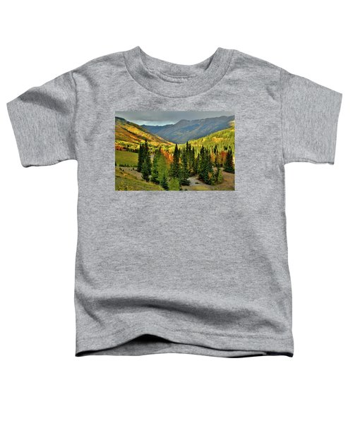 Looking North From Red Mountain Pass Toddler T-Shirt