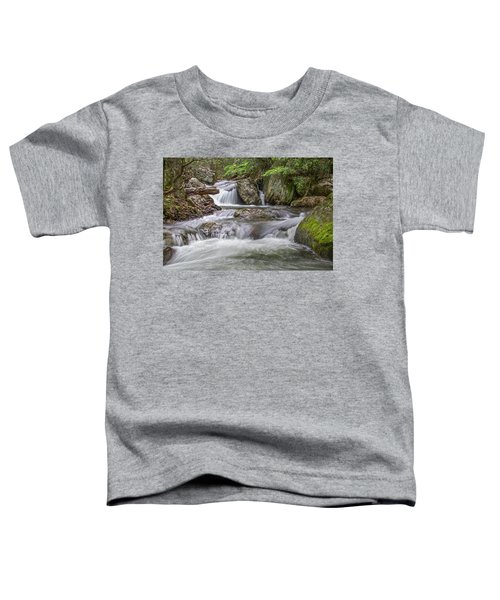 On The Trail To Cascade Falls Toddler T-Shirt