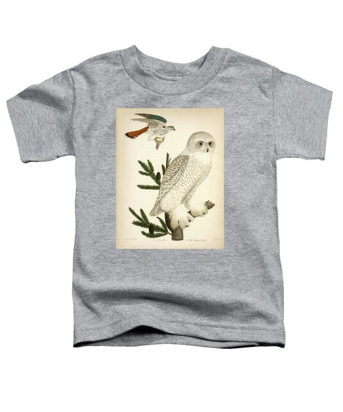 1. Snow Owl. 2. Male Sparrow-hawk. Toddler T-Shirt