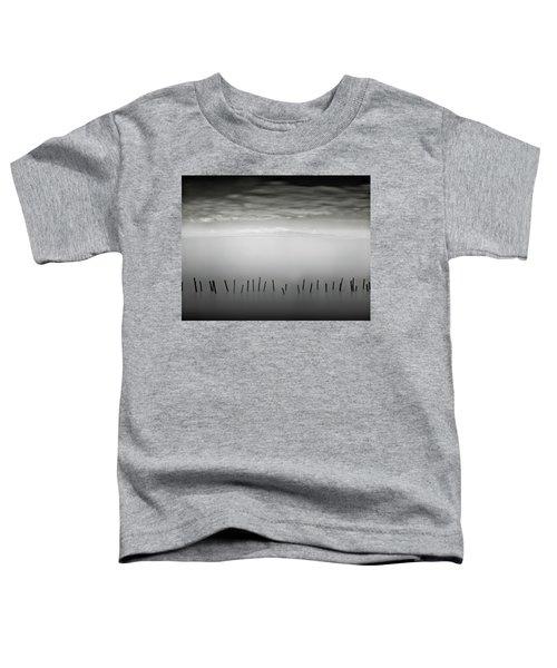 Transmigrations I Toddler T-Shirt