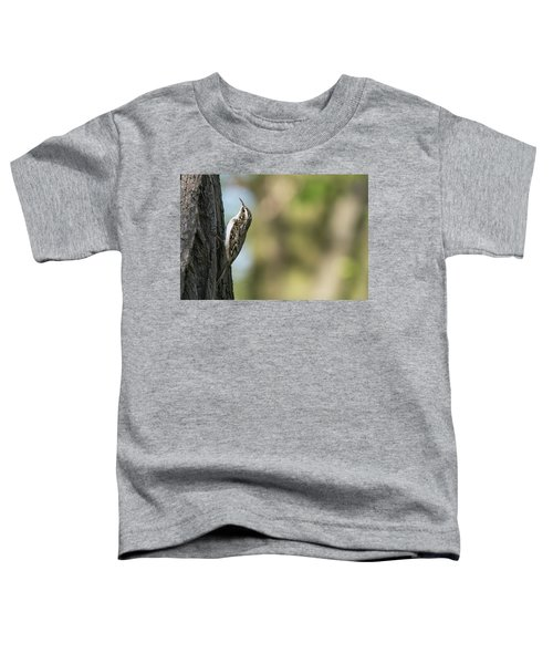 Treecreeper Toddler T-Shirt
