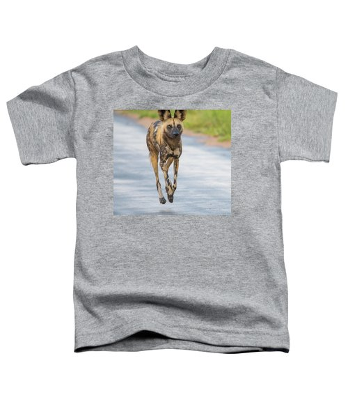 African Wild Dog Bouncing Toddler T-Shirt