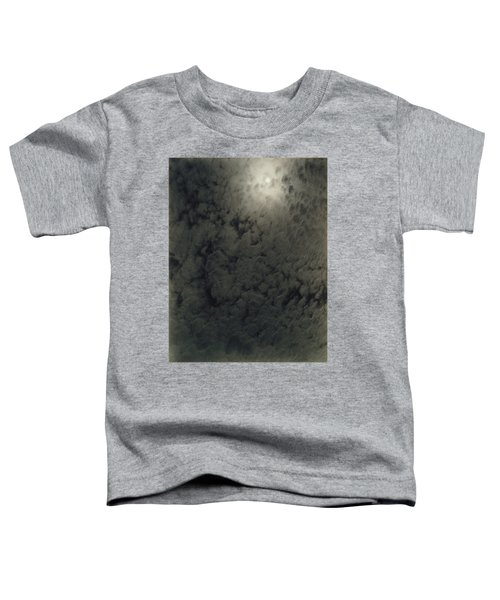 Alfred Stieglitz  So Subtle That It Becomes More Real Than Reality Toddler T-Shirt