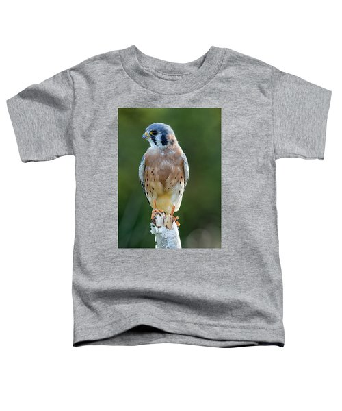 American Kestrel 9251502 Toddler T-Shirt