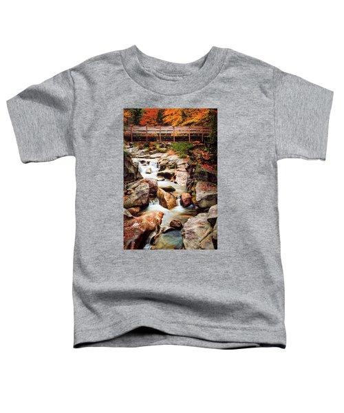 Ammonoosuc River, Autumn Toddler T-Shirt