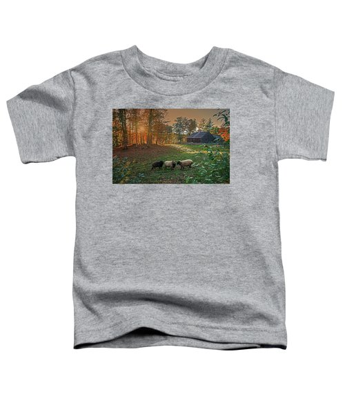 Autumn Sunset At The Old Farm Toddler T-Shirt