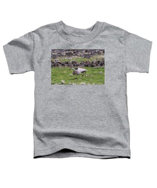 B27 Toddler T-Shirt