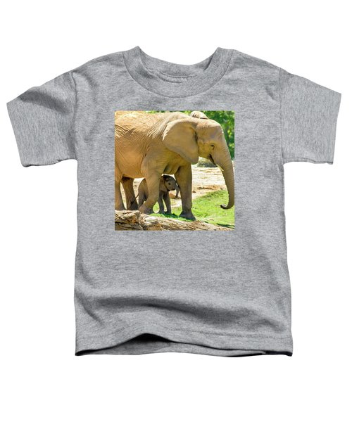 Baby's Safe House Toddler T-Shirt