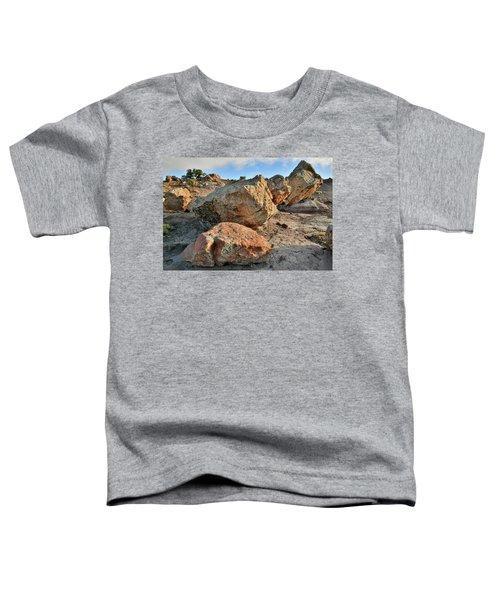 Balanced Rocks In Bentonite Site Toddler T-Shirt