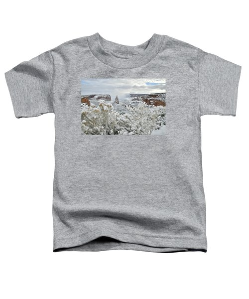 Beautiful Snow Morning Along Rim Rock Drive Toddler T-Shirt