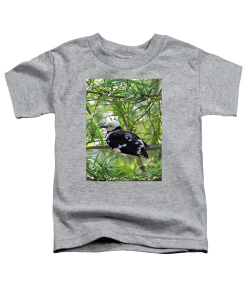 Black Collared Beauty Toddler T-Shirt