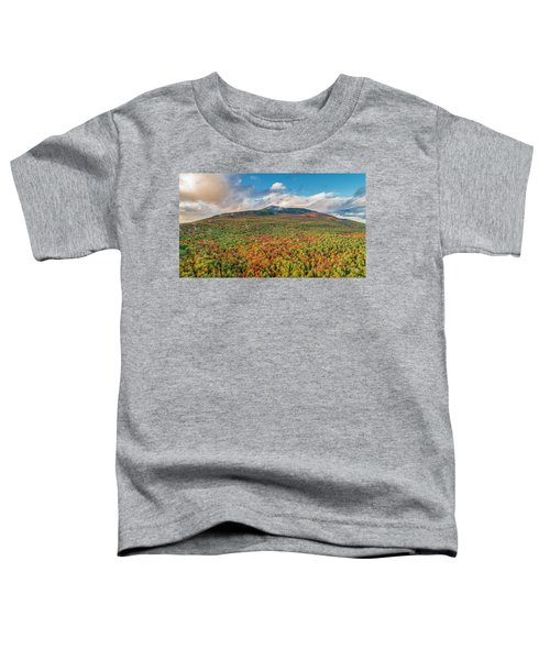 Blanketed In Color Toddler T-Shirt