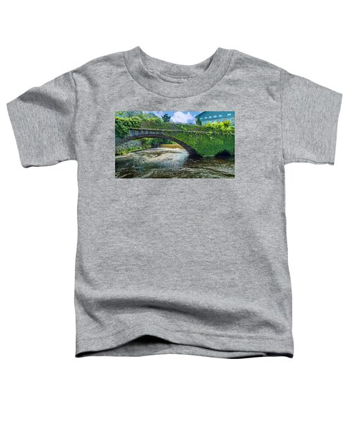 Bridge Of Flowers Toddler T-Shirt