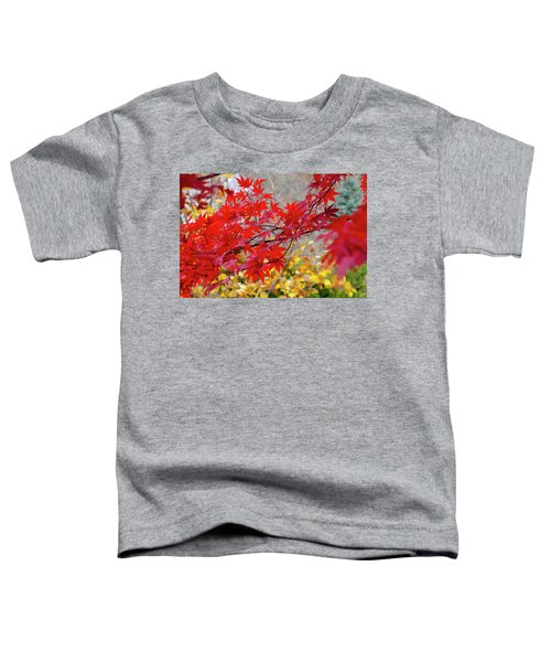 Brilliant Fall Color Toddler T-Shirt