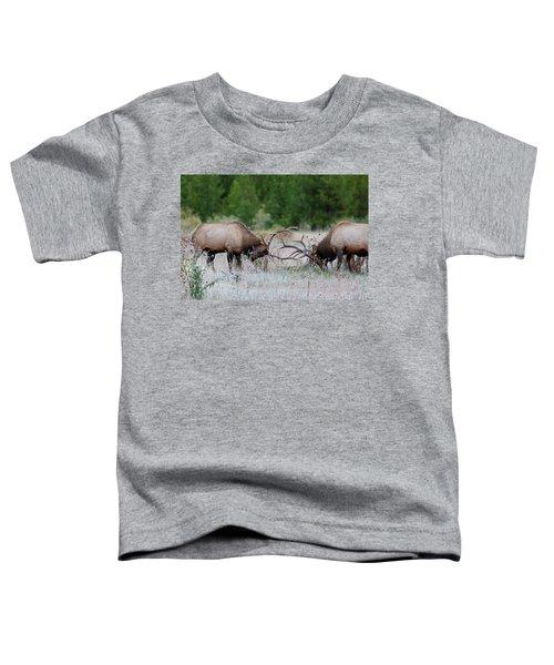 Bull Elk Battle Rocky Mountain National Park Toddler T-Shirt