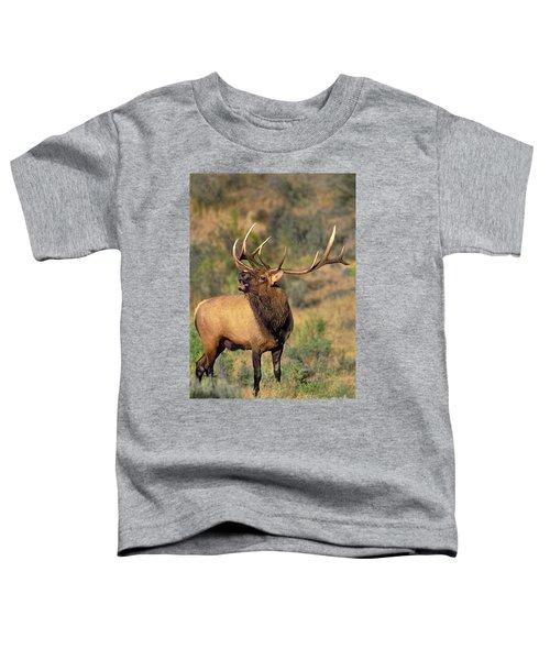 Bull Elk In Rut Bugling Yellowstone Wyoming Wildlife Toddler T-Shirt