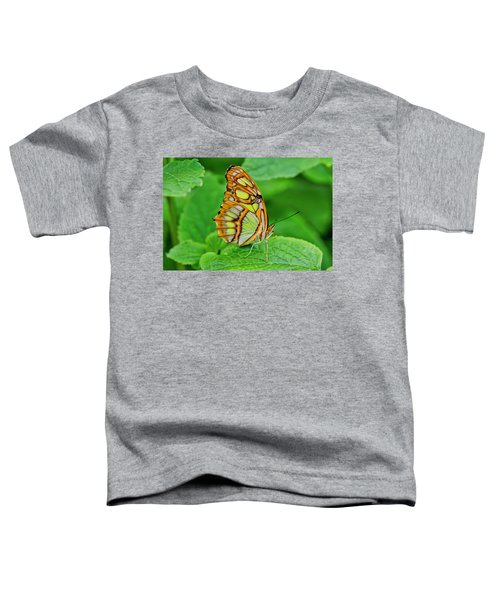 Butterfly Leaf Toddler T-Shirt