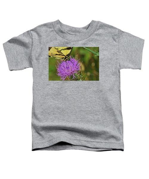 Butterfly On Bull Thistle Toddler T-Shirt