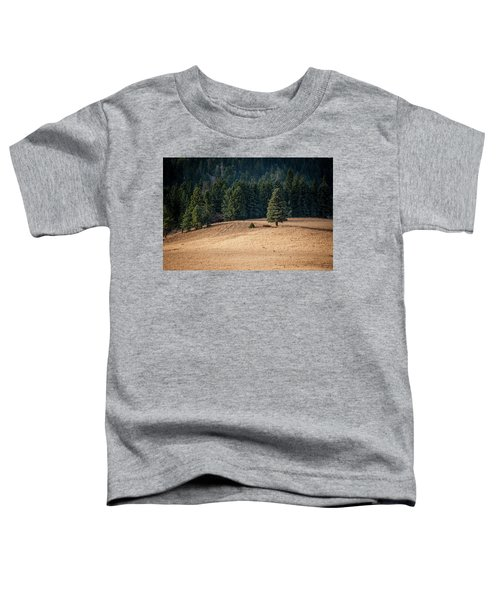 Caldera Edge Toddler T-Shirt