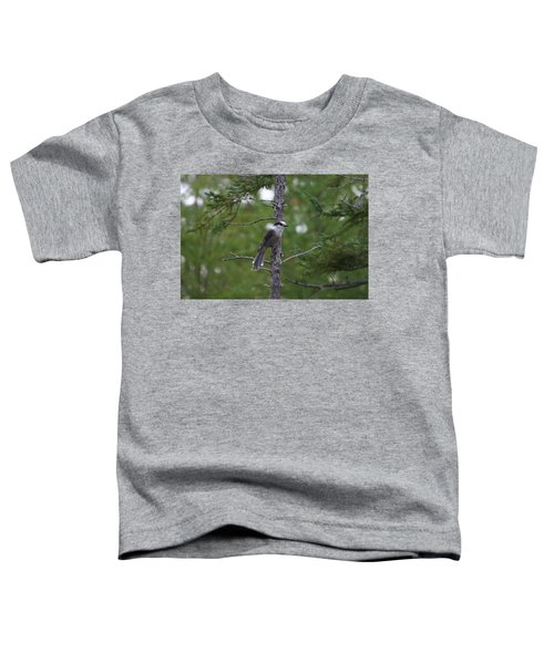 Canada Jay 101305 Toddler T-Shirt