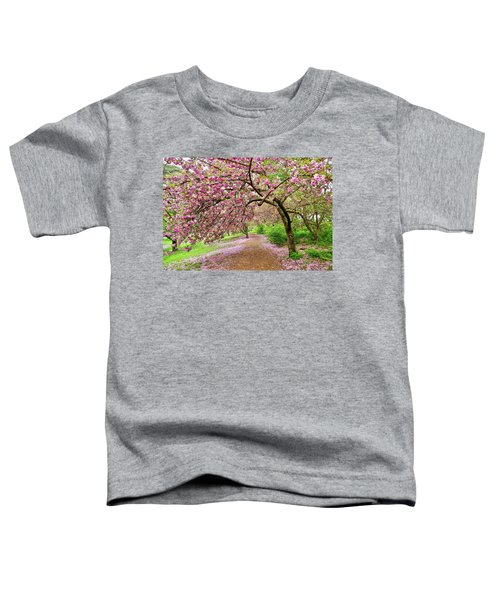 Central Park Cherry Blossoms Toddler T-Shirt