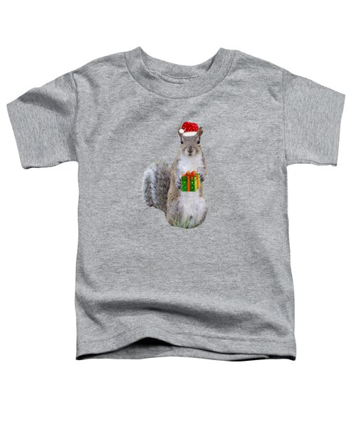 Christmas Gift From Squirrel Toddler T-Shirt