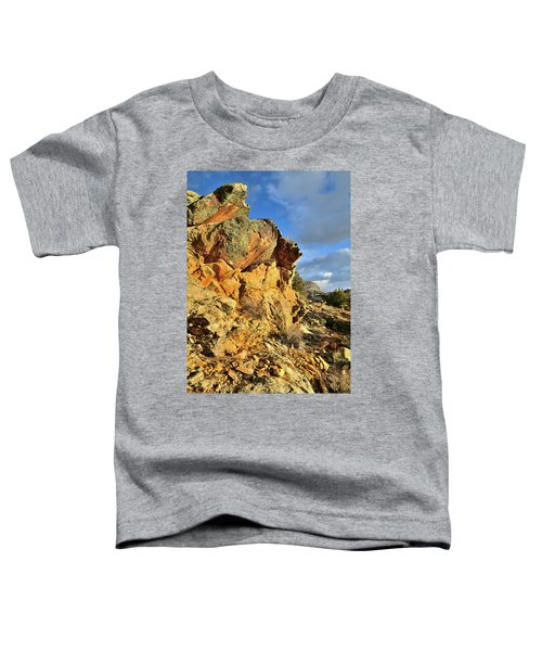 Colorful Crags In Colorado National Monument Toddler T-Shirt