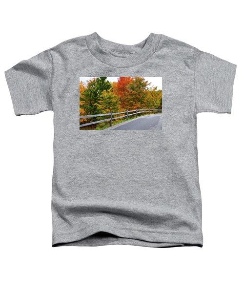 Colorful Lane Toddler T-Shirt