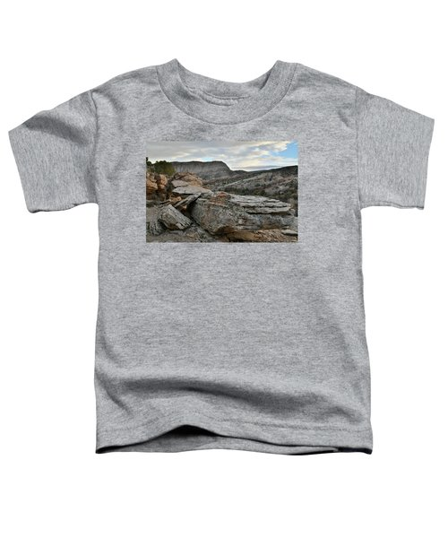 Colorful Overhang In Colorado National Monument Toddler T-Shirt