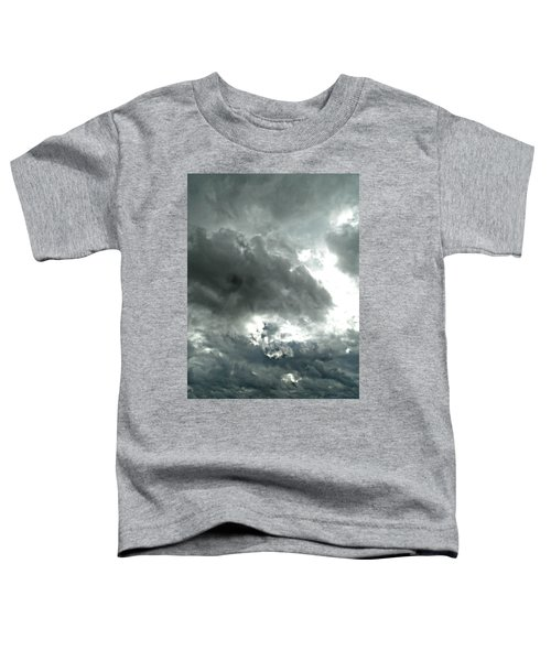 Colossal Covering Toddler T-Shirt