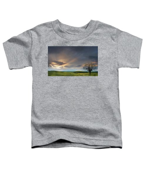 Countryside - Edit This 24 Toddler T-Shirt