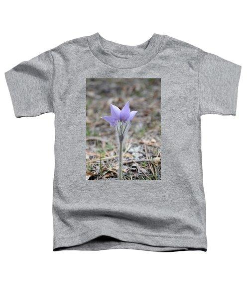 Crocus Detail Toddler T-Shirt