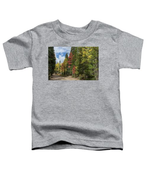 Toddler T-Shirt featuring the photograph Cruising Colorado by James BO Insogna