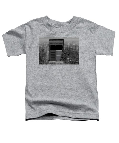 Crumblling Window Toddler T-Shirt